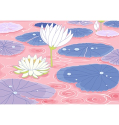 pond with lotus flowers vector image