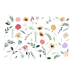 set summer flowers set flat spring flower vector image