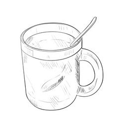 sketch of cup with spoon vector image