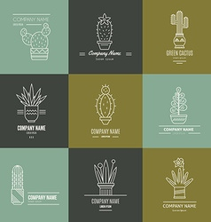 Succulent Logotypes vector image