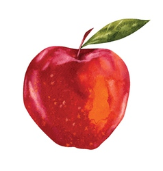Watercolor apple vector