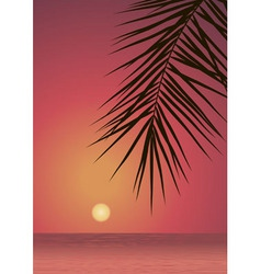 red sunset vector image vector image