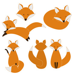 cute fox set vector image