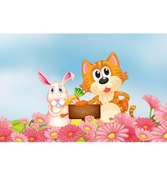 A bunny holding a carrot and a cat holding an vector image vector image