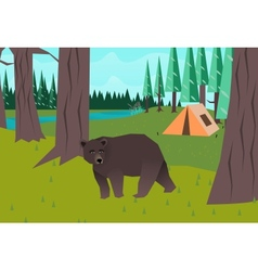 Bear in the woods vector