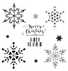 Beautiful snowflakes set for christmas winter vector
