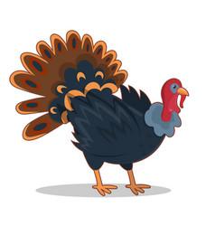 Cartoon turkey icon image isolated on white vector