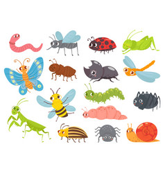 Cute cartoon insects funny caterpillar and vector
