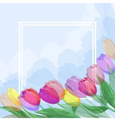 Flowers tulips and frame vector image