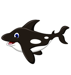 killer whale cartoon vector image