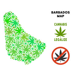 Royalty free cannabis leaves style barbados map vector
