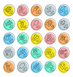set line icons groats vector image