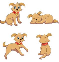terrier positions vector image