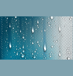 Water droplets isolated on transparent background vector