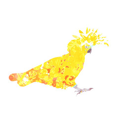 cockatoo silhouette with yellow orange and brown vector image