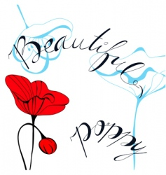 beautiful poppy vector image