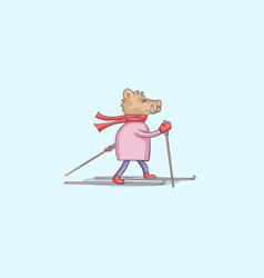 boar on skis vector image