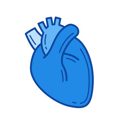 human heart line icon vector image