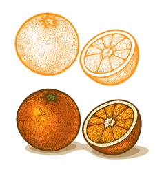 Orange retro vector image
