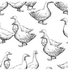 Pattern walking geese vector