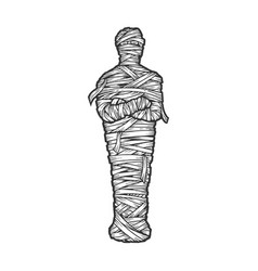 Ancient egyptian mummy sketch vector