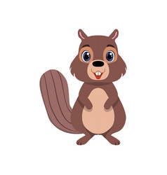 Cute chipmunk animal cartoon character front view vector