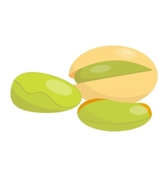 Pile of nuts pistachios vector