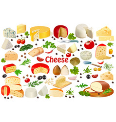 set different types cheese on a white vector image