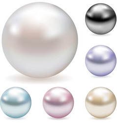 color pearls vector image