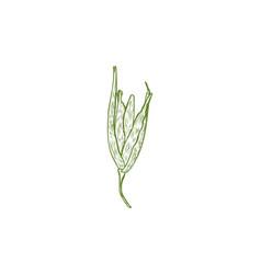 Hand drawn pop corn logo designs inspiration vector