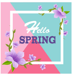 hello spring square purple flower colorful backgro vector image