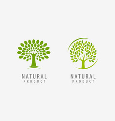 Natural product logo tree symbol or label vector