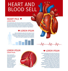 Realistic heart and blood sell banner with diagram vector