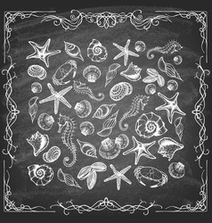 set hand-drawn marine life on chalkboard vector image