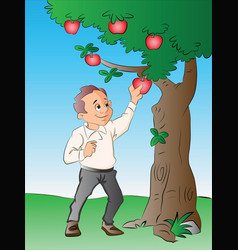 Man picking apples from a tree vector