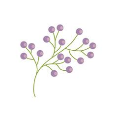 branch flower wild image vector image