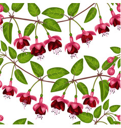 fuchsia seamless pattern vector image vector image