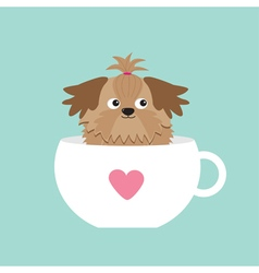 Shih Tzu dog sitting in pink cup with heart Cute vector image vector image