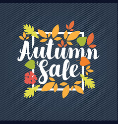 autumn sale design with bright autumn leaves vector image