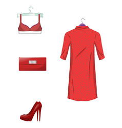 elegant set of female clothes and accessorie vector image