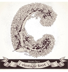 Fable forest hand drawn by a vintage font - C vector