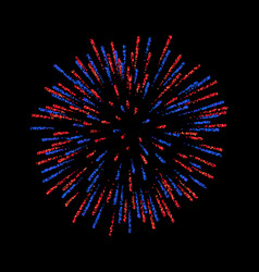 Firework isolated beautiful salute on black vector