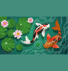 Koi fishes swimming in pond vector