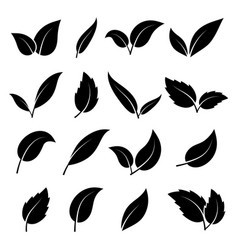 leaf silhouette black leaves trees and vector image