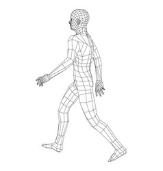 wireframe walking man vector image