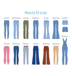 women s pants collection sketch vector image