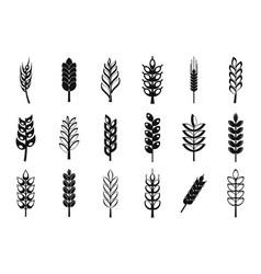 wheat icon set simple style vector image