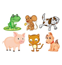 Differrent kinds of land animals vector image vector image