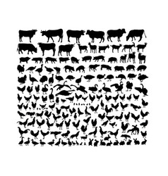 farm animal activity silhouettes vector image