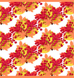 pattern of bouquets of autumn leaves on a white vector image
